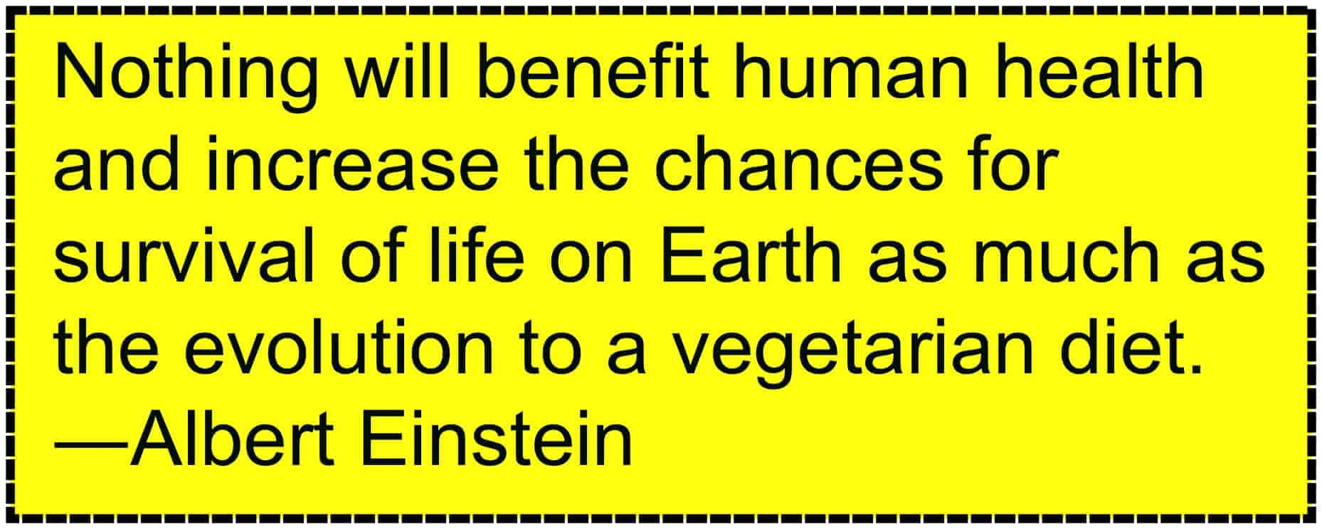 Vegetarians Helps the World
